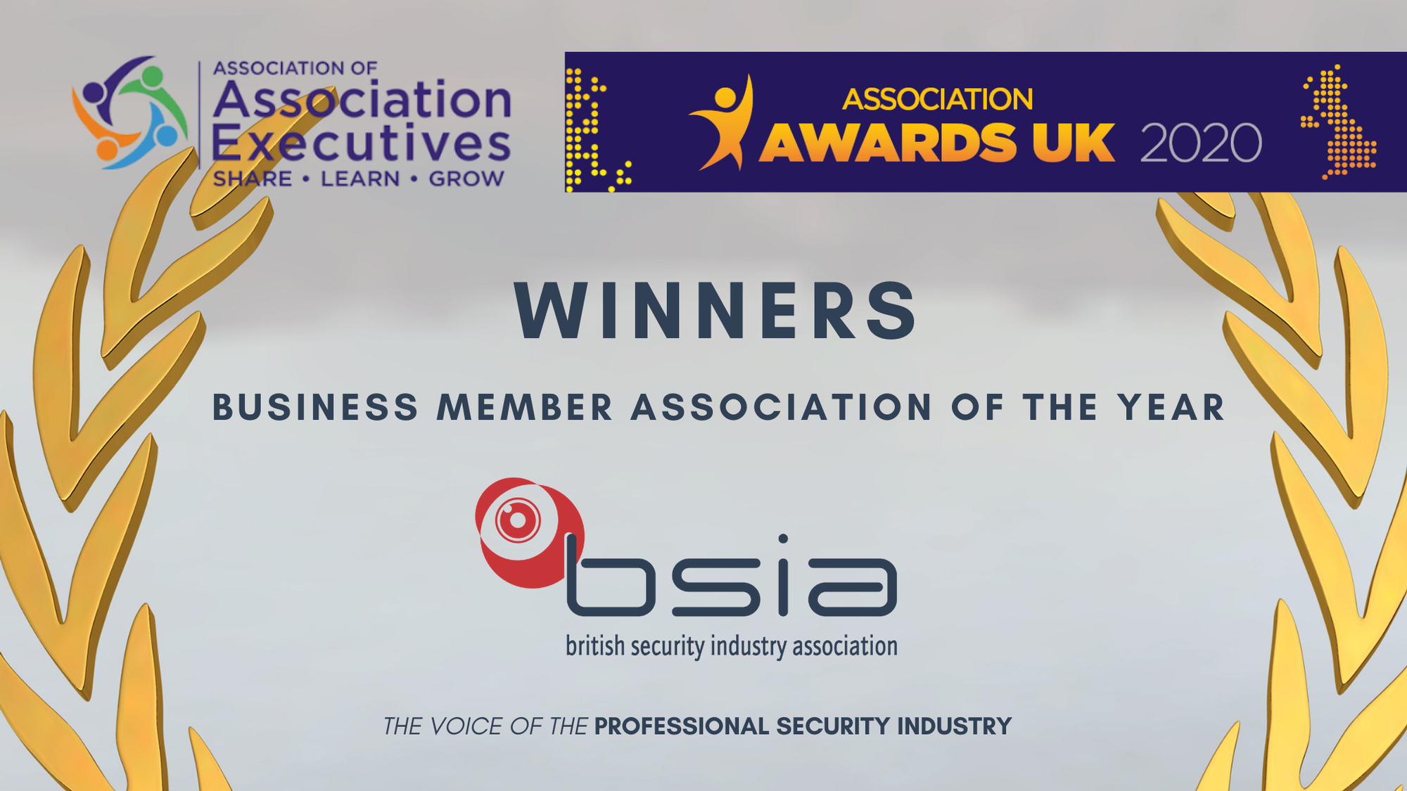 BSIA win Business Member Association of the Year